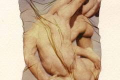 Rosella Centanni, Emulsion Lift Polaroid